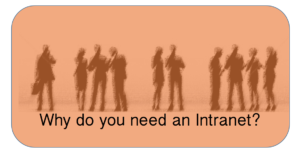Need an Intranet?